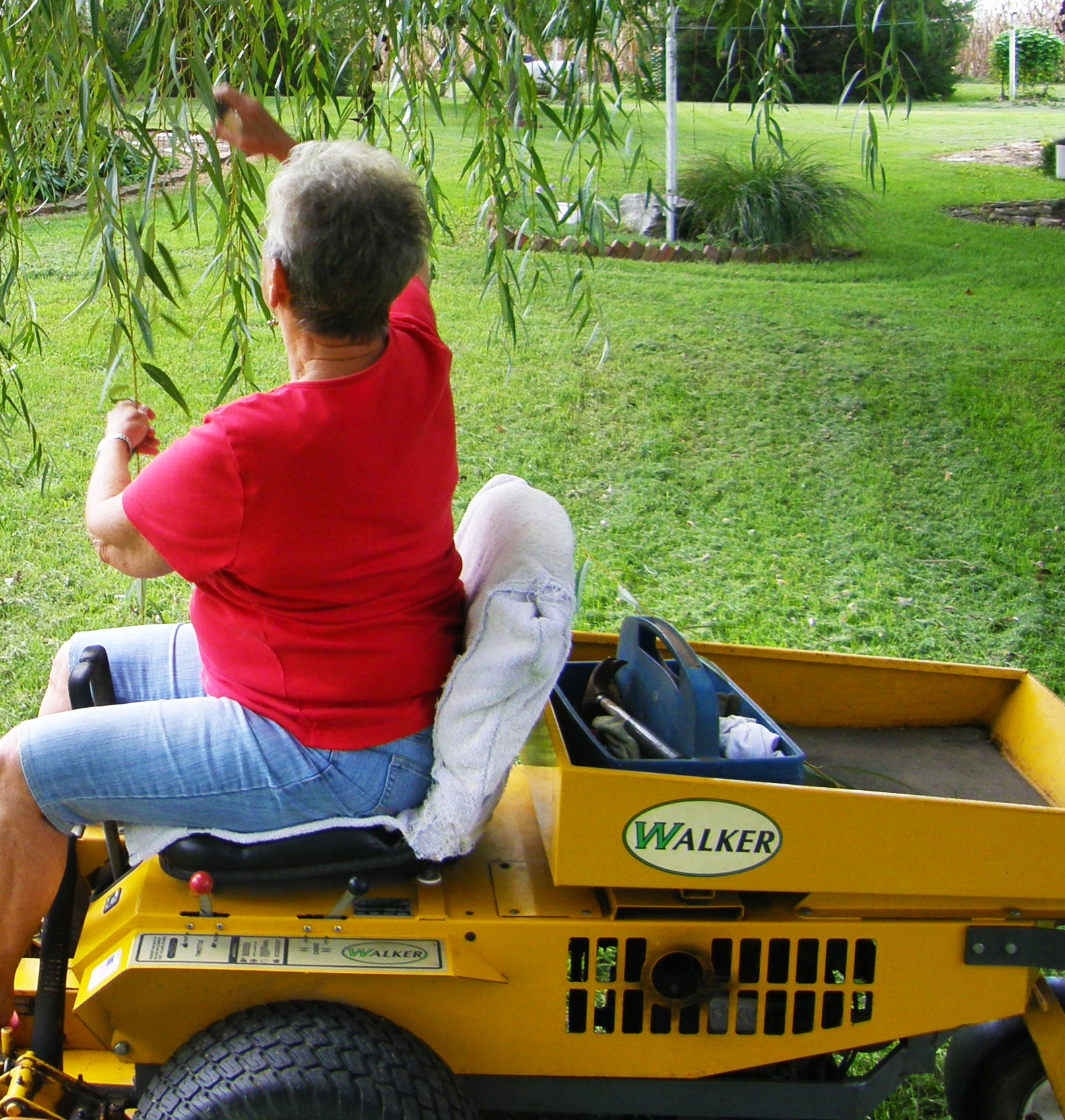 Nobody Touches Barb's Mower