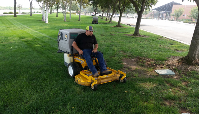While Juan oversees lawn maintenance crews and Alex oversees landscaping and irrigation, the brothers have had a fascination with the yellow machine since they were youngsters working in their father's gardening business.